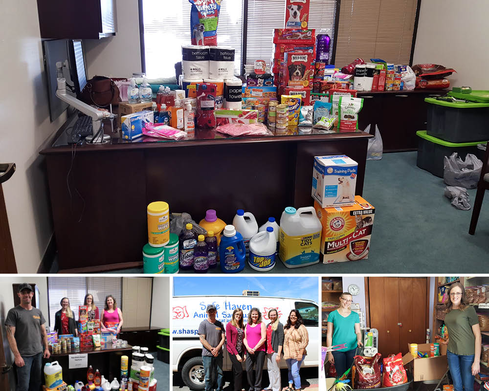 collage of donated items for pet food drive with bank staff